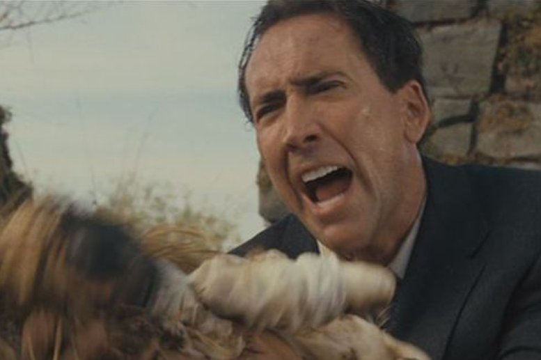 Top 8 Nicolas Cage Crazy Faces   Hard Ticket to Home Video   777 x 517 jpeg 43kB
