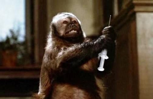 Monkey Shines-02