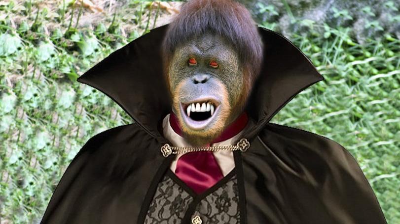 Vampire-Monkey