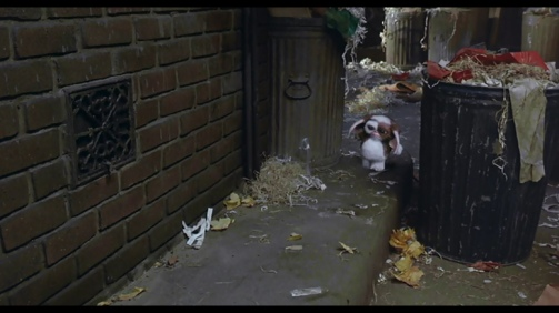 This one picture of Gizmo running between garbage cans is more interesting than anything that happens in Near Dark.