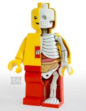 LEGO-Minifig-Anatomy-by-Jason-Freeny-1