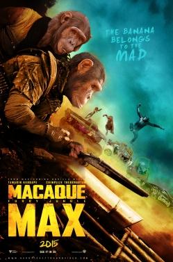 MacaqueMax_PP