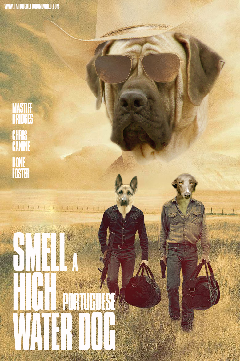 smell-a-high-portuguese-water-dog